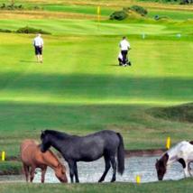 Tavistock Golf Course