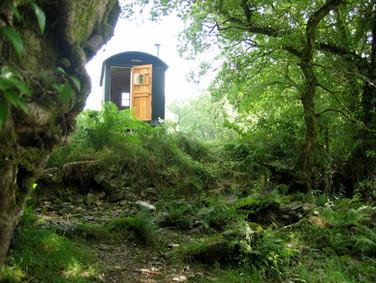 Shepherd's Hut Jul 14 018 (1024x765).jpg
