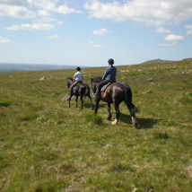Cholwell Riding Stables