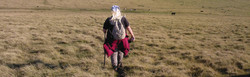 Jen-walking.jpg