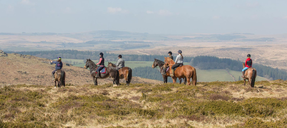 RIDING ON DARTMOOR