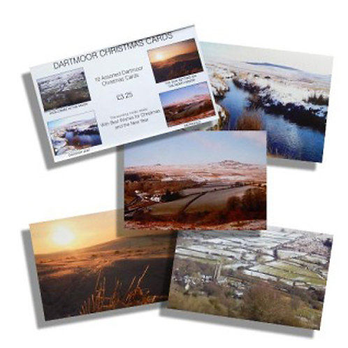 Ten mixed Dartmoor Christmas cards