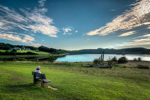 Roadford View by Mike Pettett.jpg