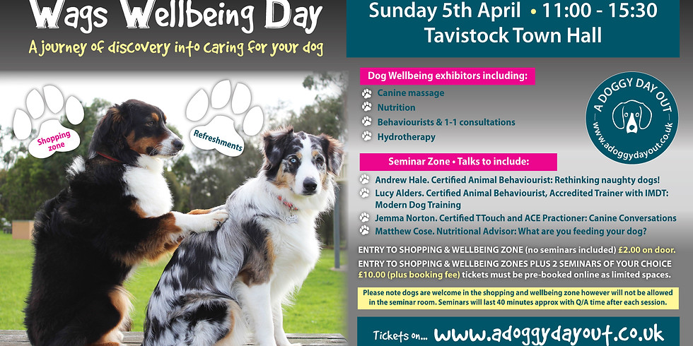 Wags Wellbeing Day