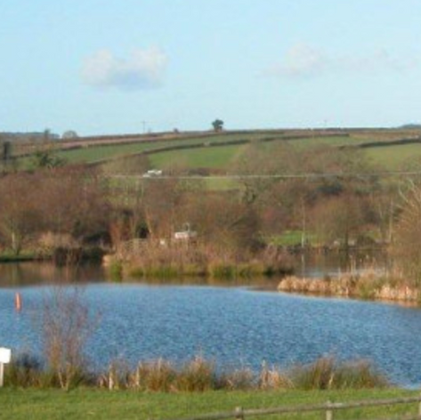 Milemead Fisheries