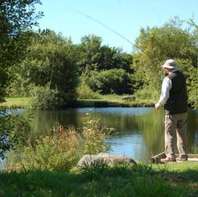 Tavistock Trout Fishery
