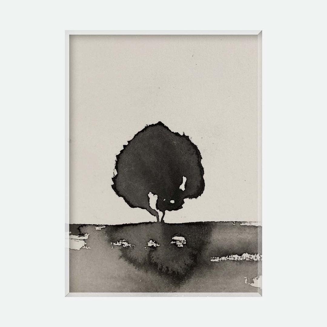 arbre noir