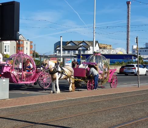 tour-with-horse-in-blackpool.jpg