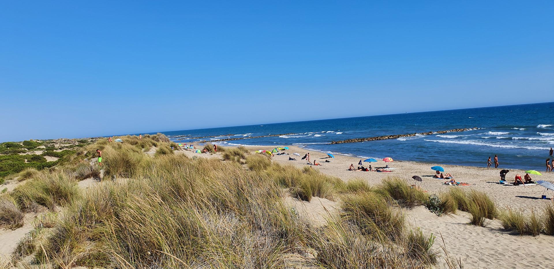 Gay naked beach!