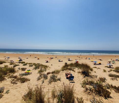 Gay beach - Beach 19!