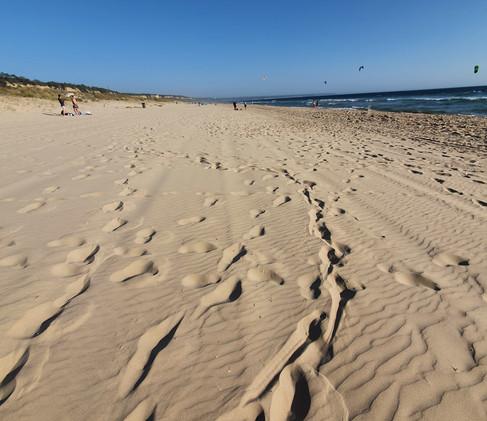 Nude beach!