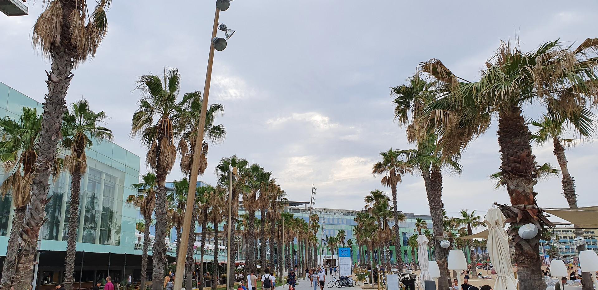 Promenade - gay Barcelona