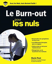 Le-Burn-Out-pour-les-Nuls-grand-format.j