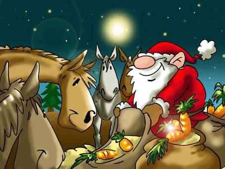 Weihnachtsreiten 🎅🤶