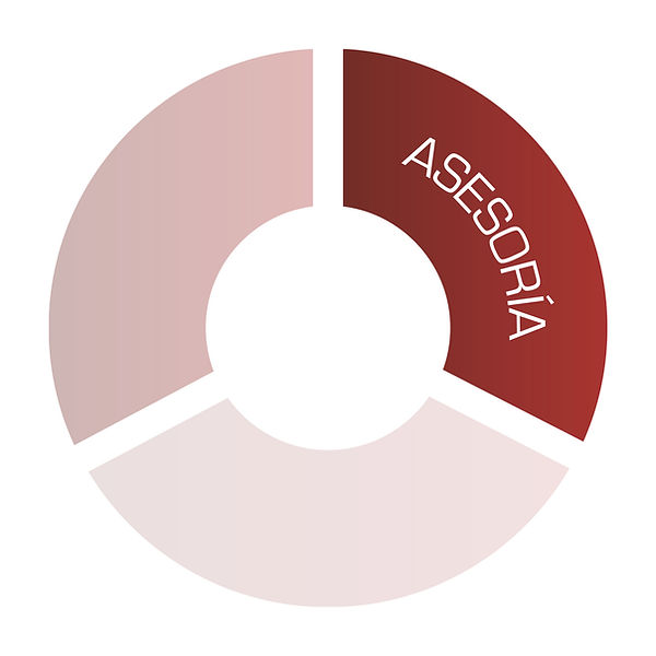 asesoria-01.jpg