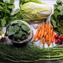 Fall veggies in full swing. CSA week 24