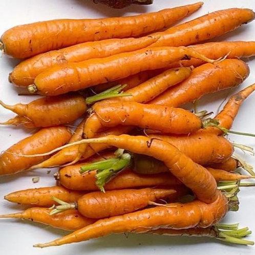 Mokum Carrots by the lb