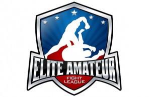 Elite-Fighting-Amateur-League-300x194