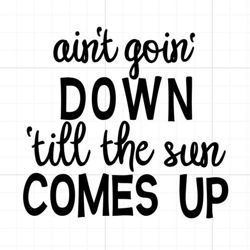 Ain't Goin' Down