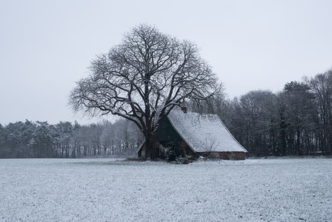 Country cabin in Winter