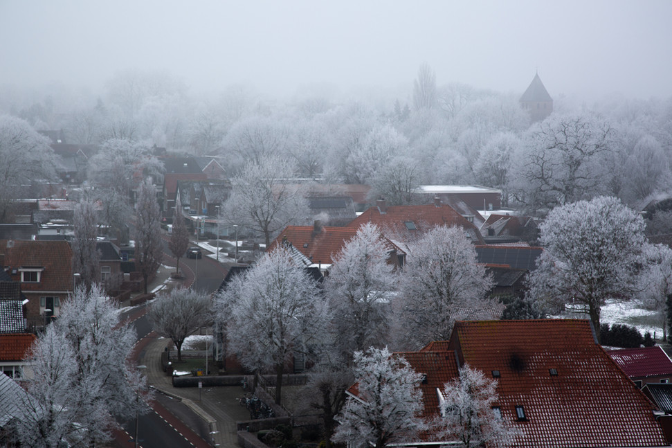 Frosty Den Ham