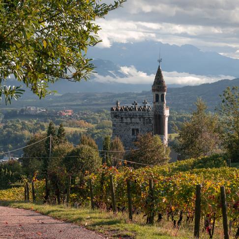 Coeur de Savoie; Herfst tussen de wijnvelden