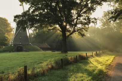 Summer morning at the Lonnekermolen