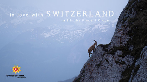 in love with Switzerland