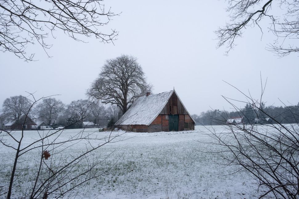 Cold days at the countryside