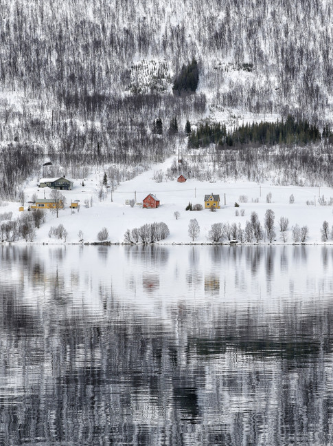 Fjord cabins