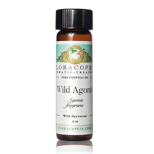 Agonis (Wild) Essential Oil