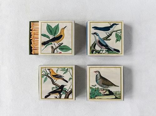 Bird Matches