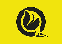 TC_YELLOW_ICON.png