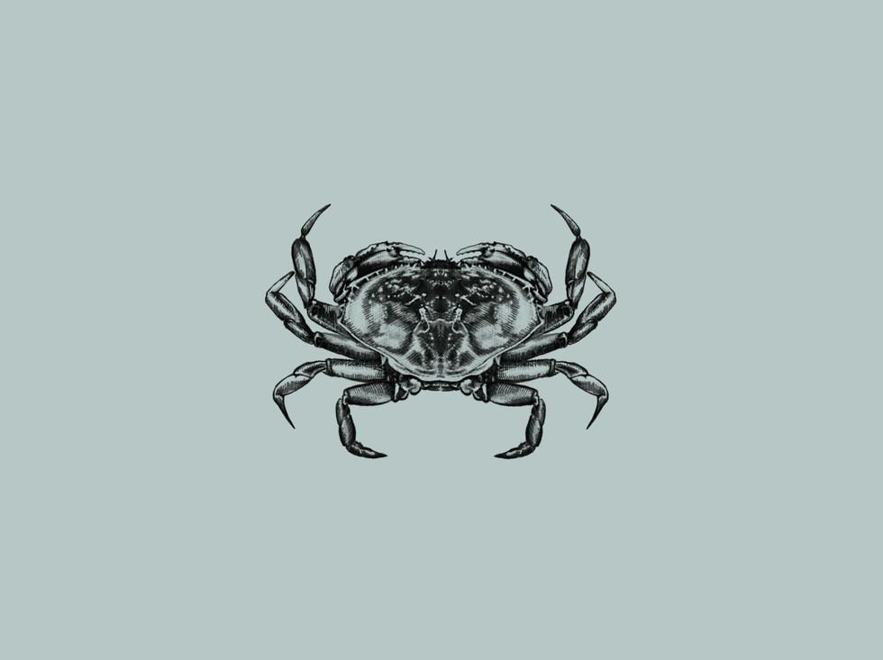crabbericon.jpg