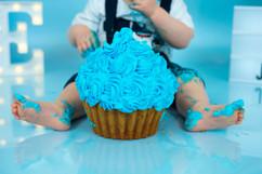 cakesmash blauwg