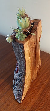 Snoozing dragon carved wooden planter by Moon Rabbit Craftworks