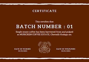 certificate2 .jpg