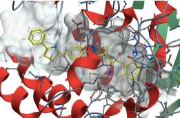 Publication in the Journal Chemical Biology & Drug Design