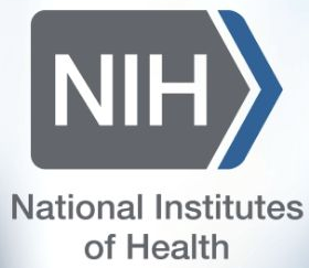 Pecic Lab Awarded National Institutes of Health - SC2 Grant Award for 2020-2023