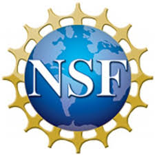 Dr. Pecic joins NSF Collaborative Project: Molecular computing for the real world