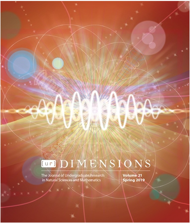 Publication in the Journal Dimensions
