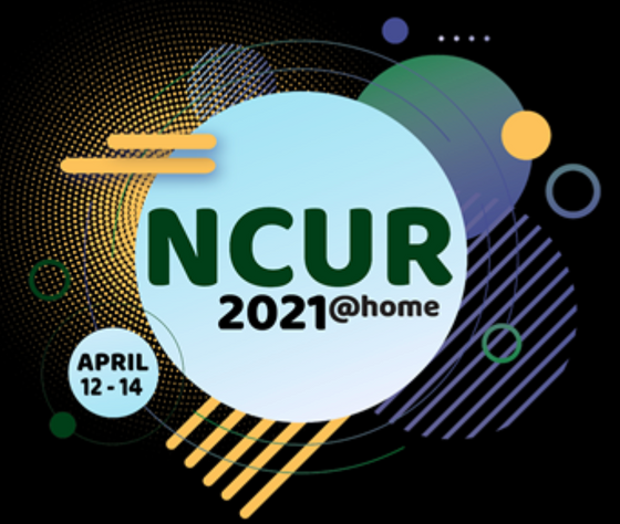 Aleksei and Veng Presented at NCUR 2021