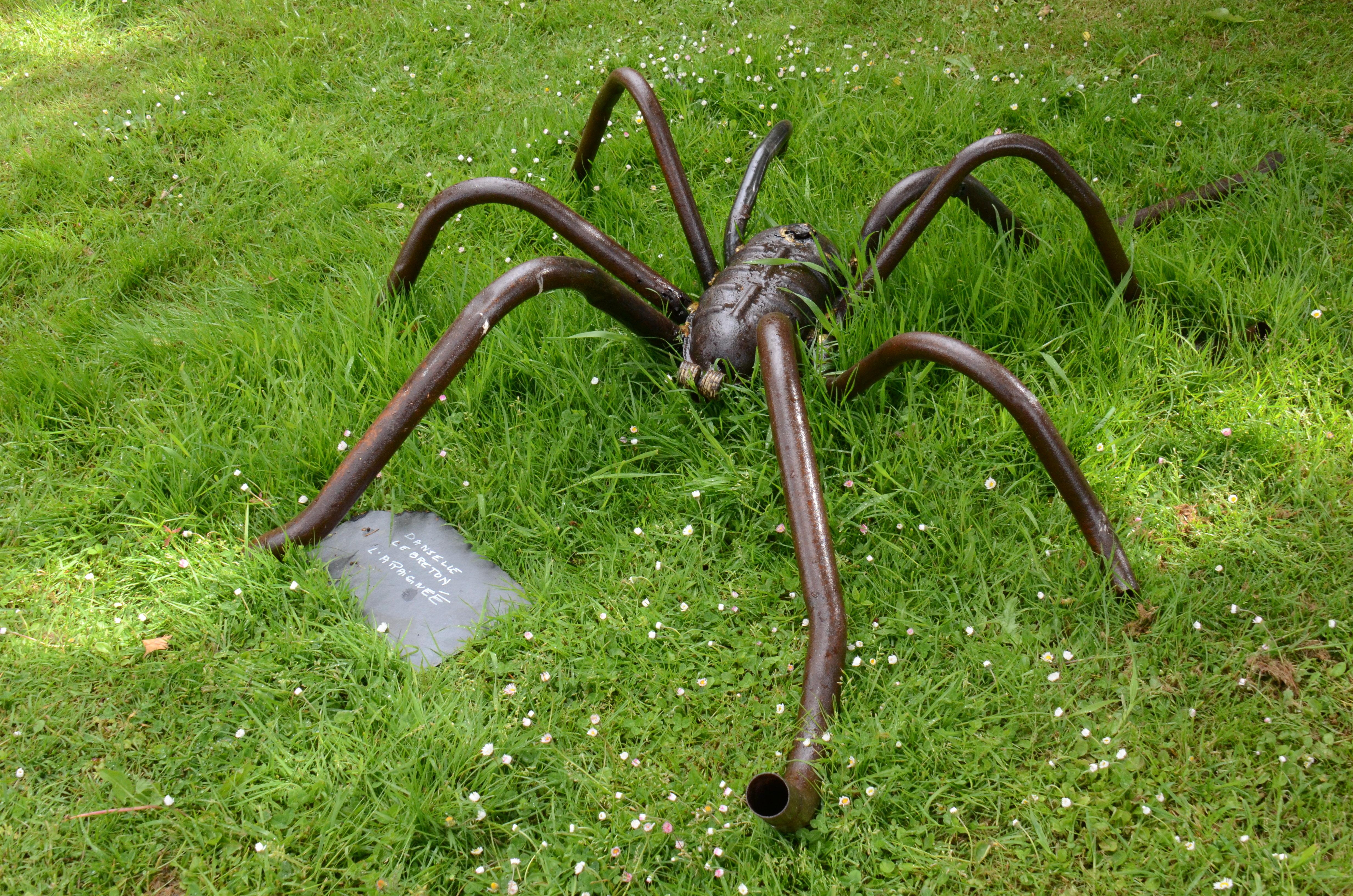 l'araignée Danielle Lebreton