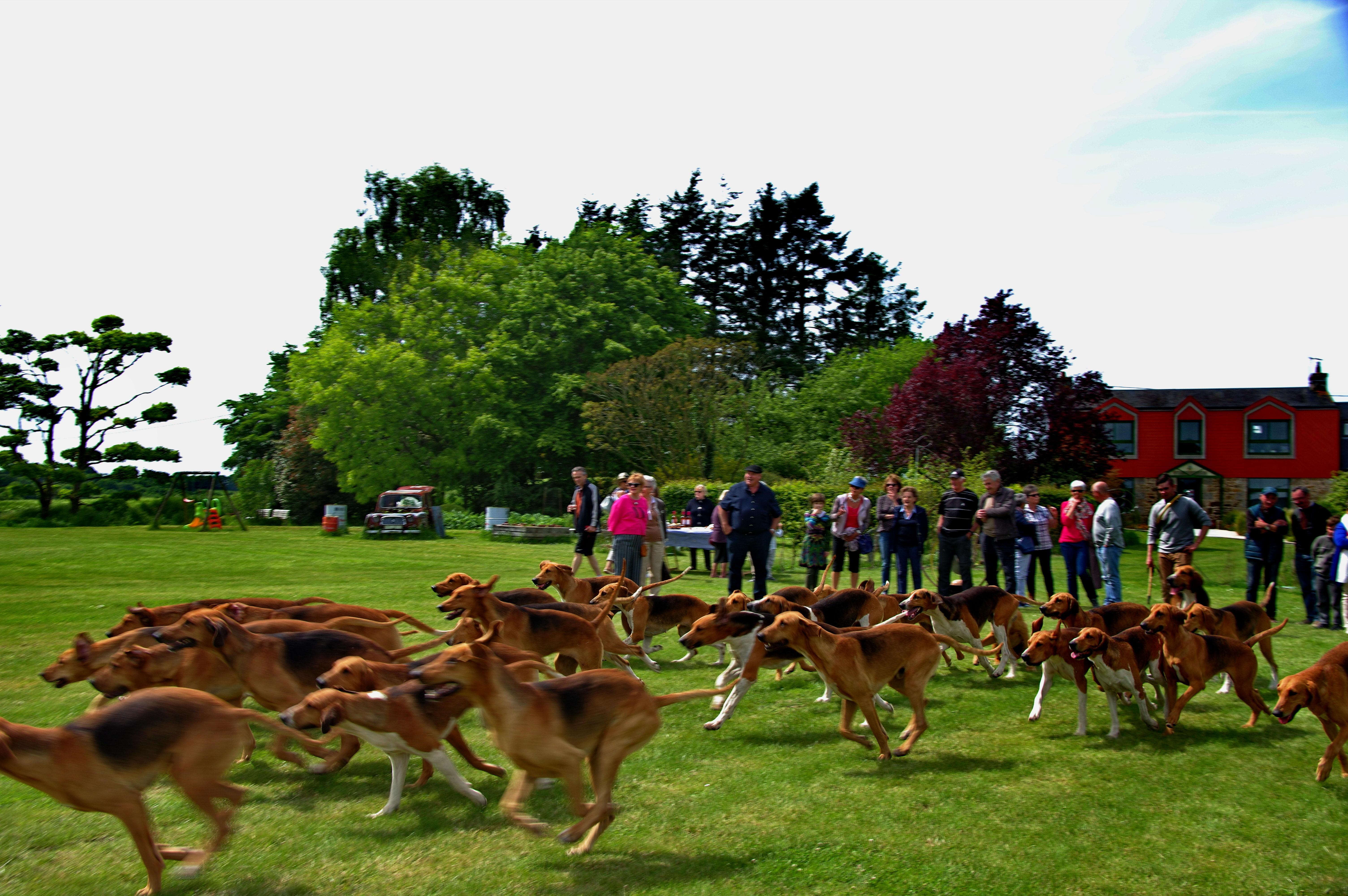 Rally d'Avaugour