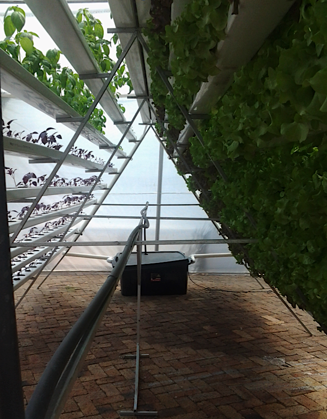 Vertical Farming_2