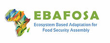 ebafosa logo full-01 copy.jpg