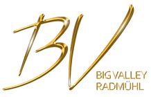 Logo_Big_Valley_gold_no_background.png