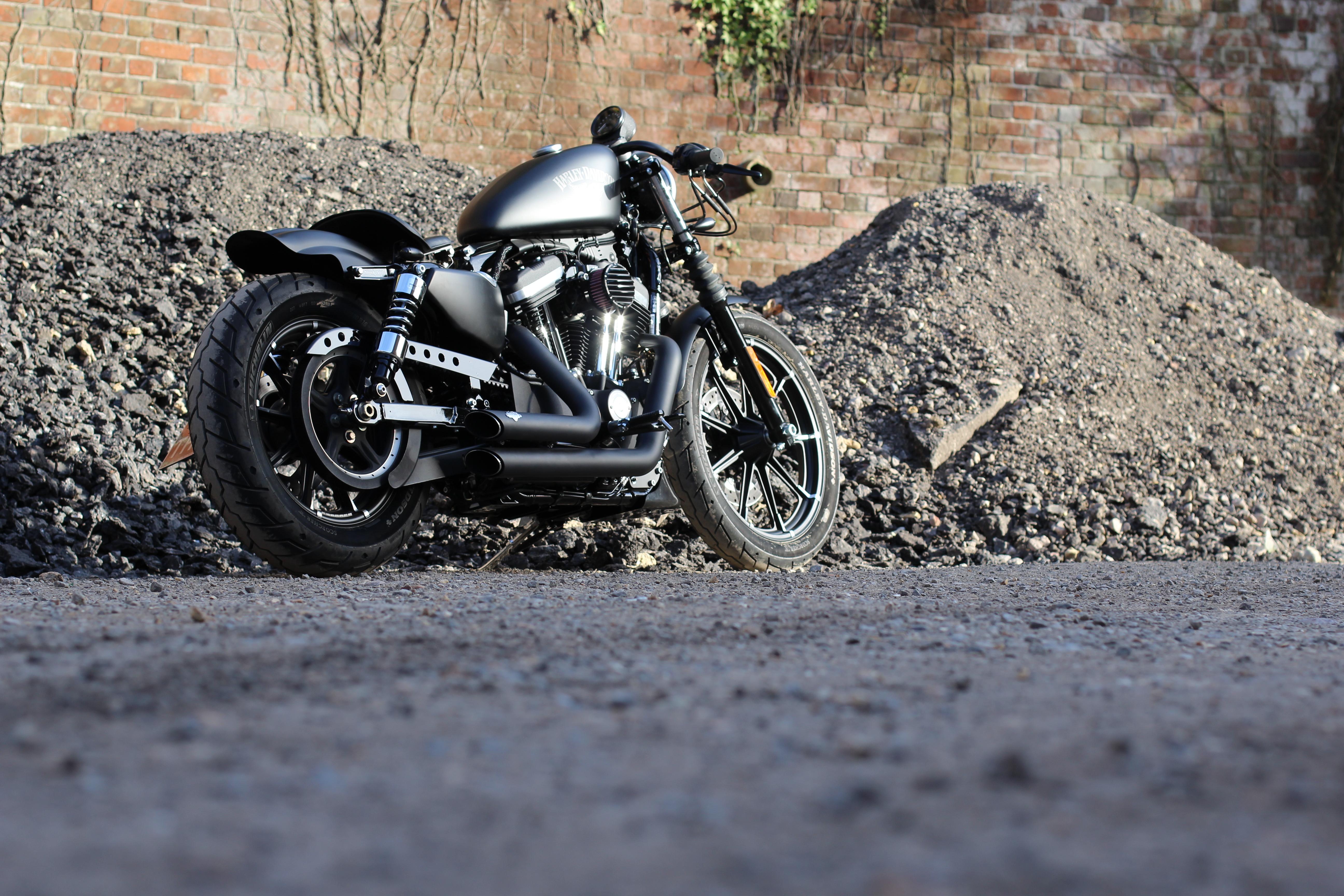 Bobber Beast Harley 883