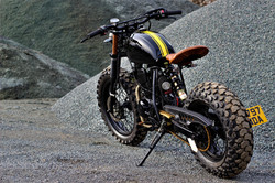 bee sting yamaha custom tw