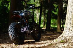 The Bear Yamaha TW 200cc